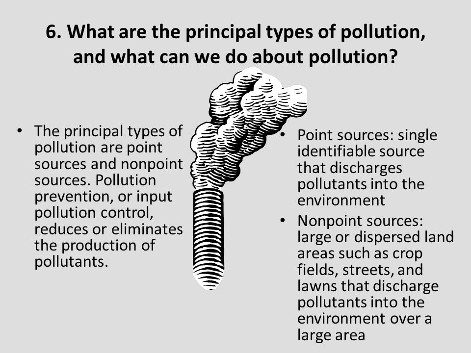 6. What are the principal types of pollution, and what can we do about pollution