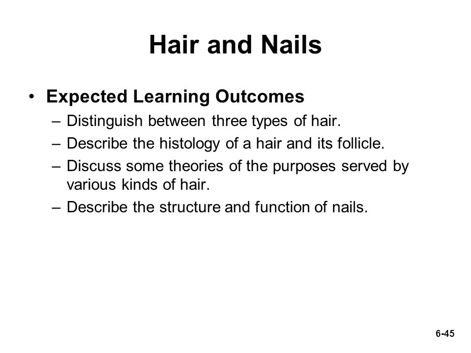 Hair And Nails Expected Learning Outcomes