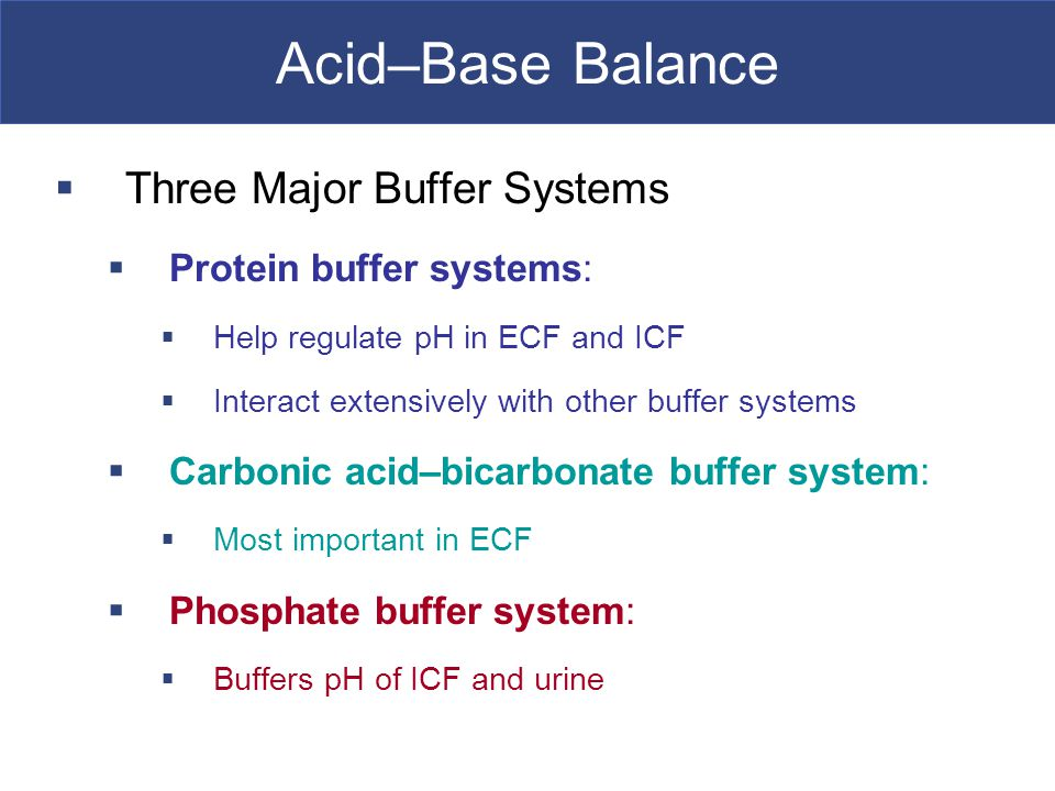how buffers help to regulate body To accomplish this, some proteins act as buffers to maintain the blood's normal ph they pick up hydrogen there are several buffer systems established in the body to neutralize acids his program advocates alkaline foods to help balance the body against the typical american diet of mostly acid-forming foods he says.