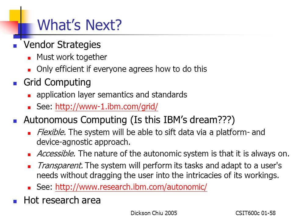 What's Next Vendor Strategies Grid Computing