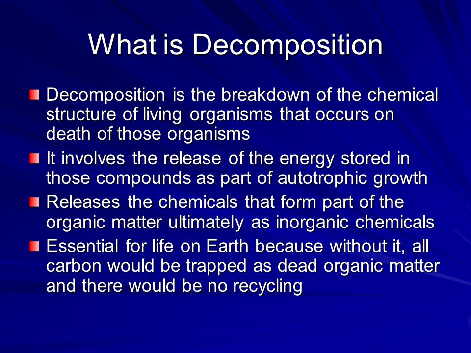 decomposition of organic matter pdf