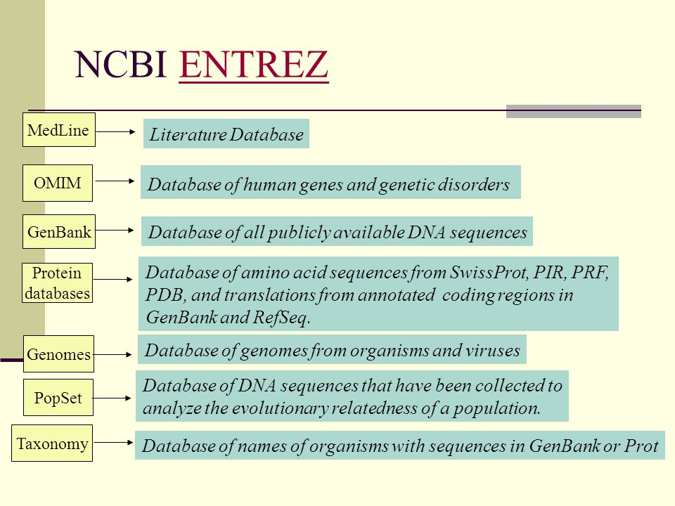 NCBI ENTREZ Literature Database
