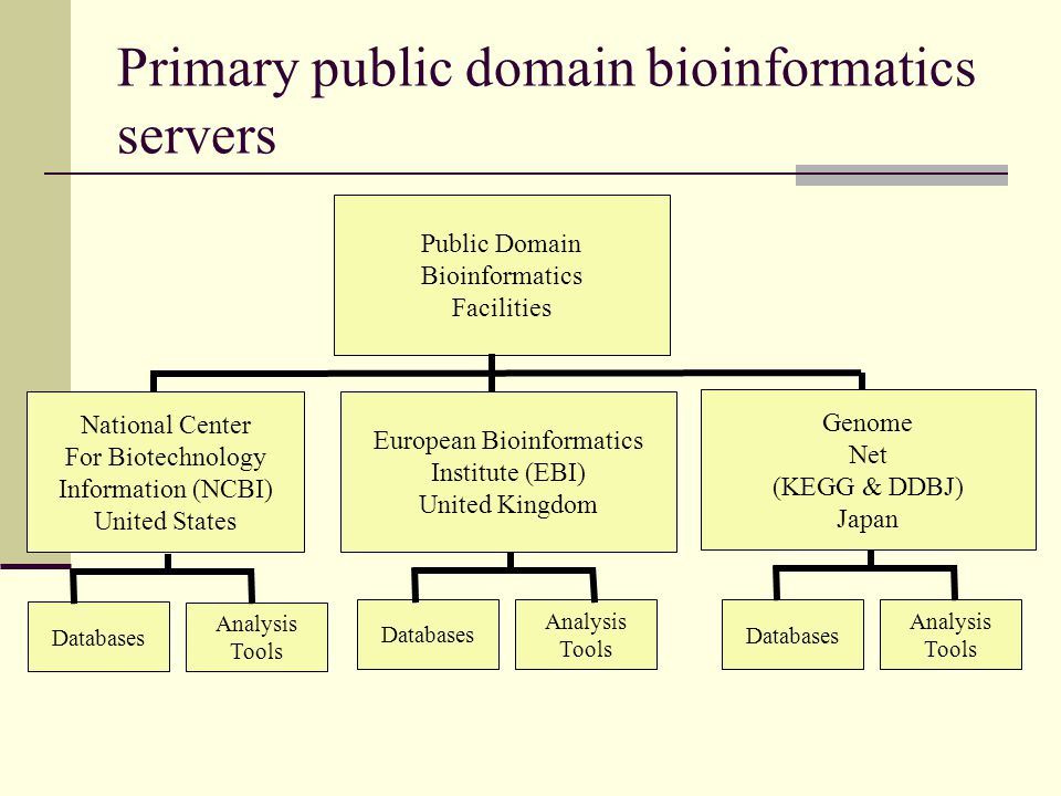 Primary public domain bioinformatics servers