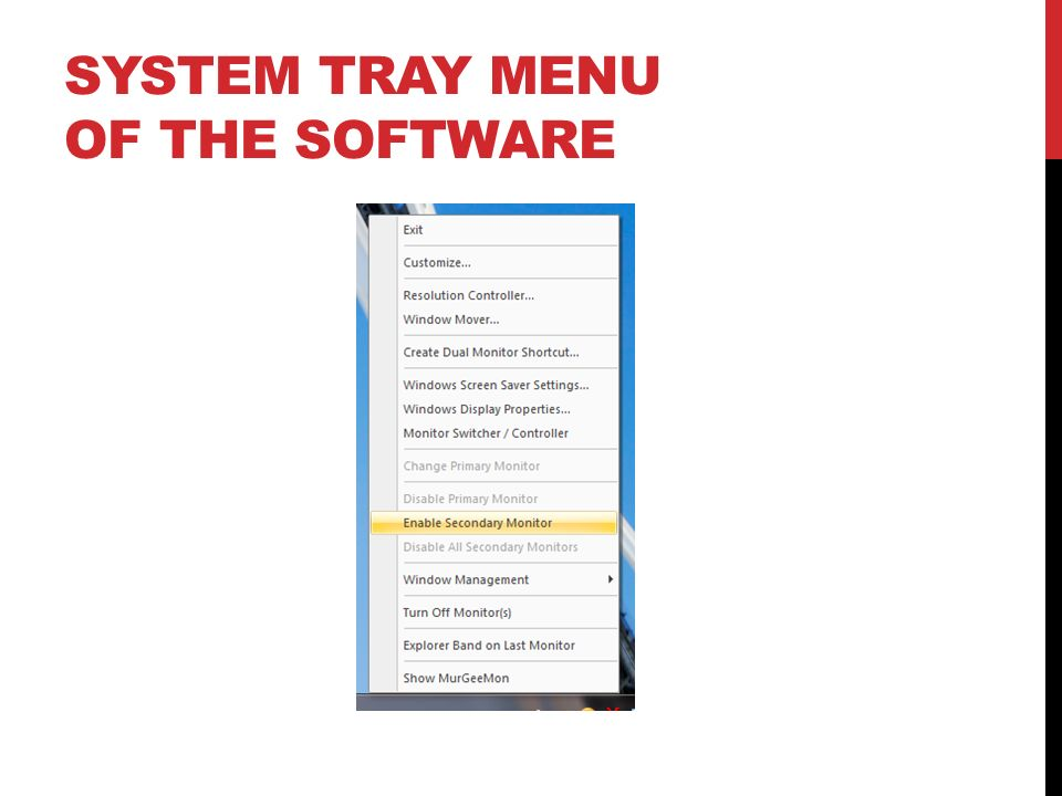 System Tray Menu of the Software