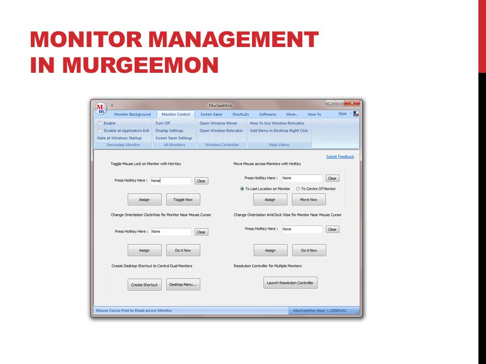 Monitor Management in MurGeeMon