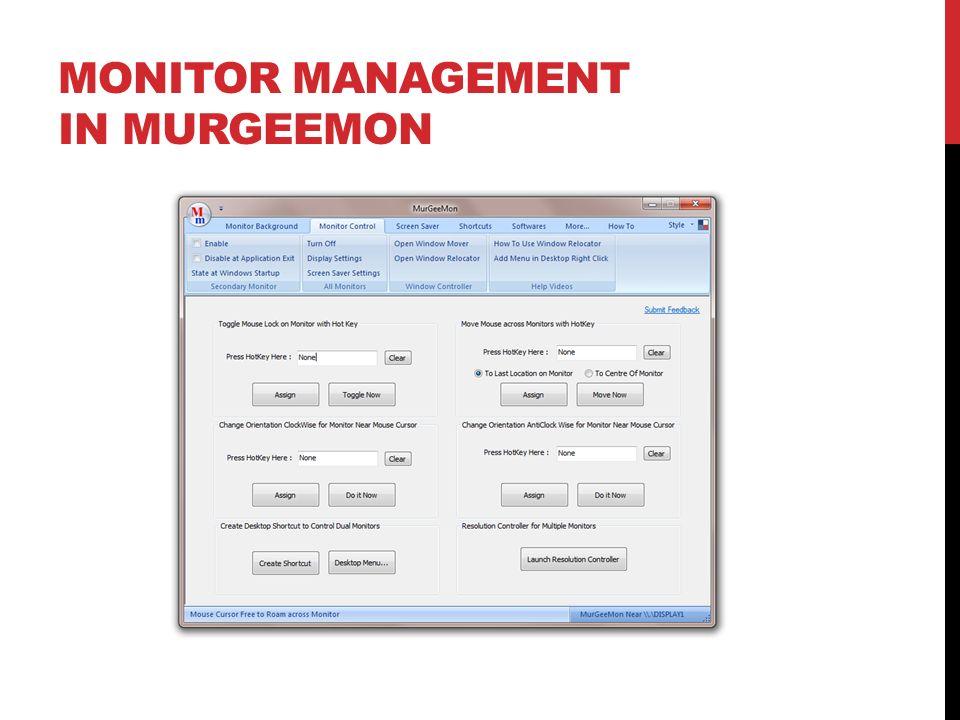 Monitor Management in MurGeeMon