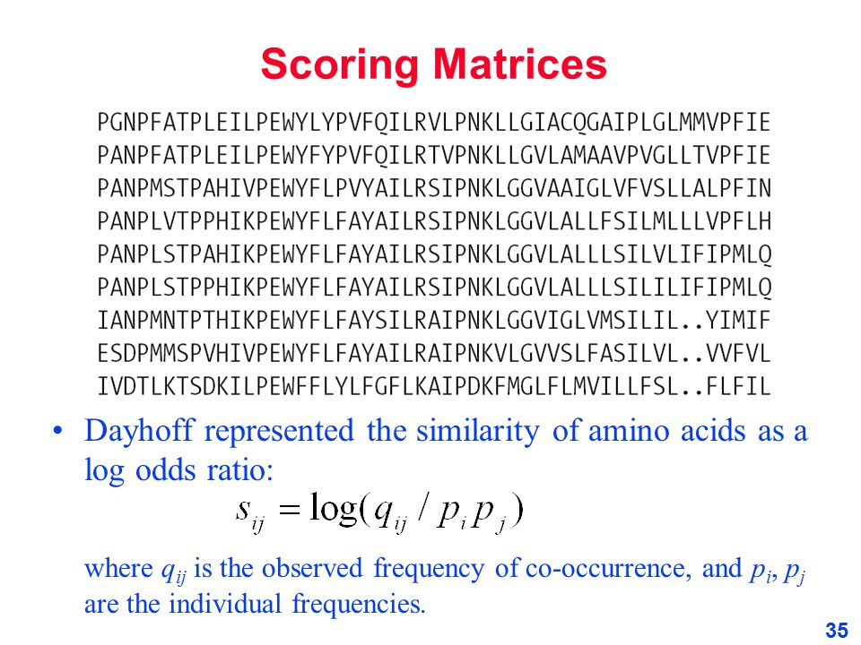 Scoring Matrices Dayhoff represented the similarity of amino acids as a log odds ratio: