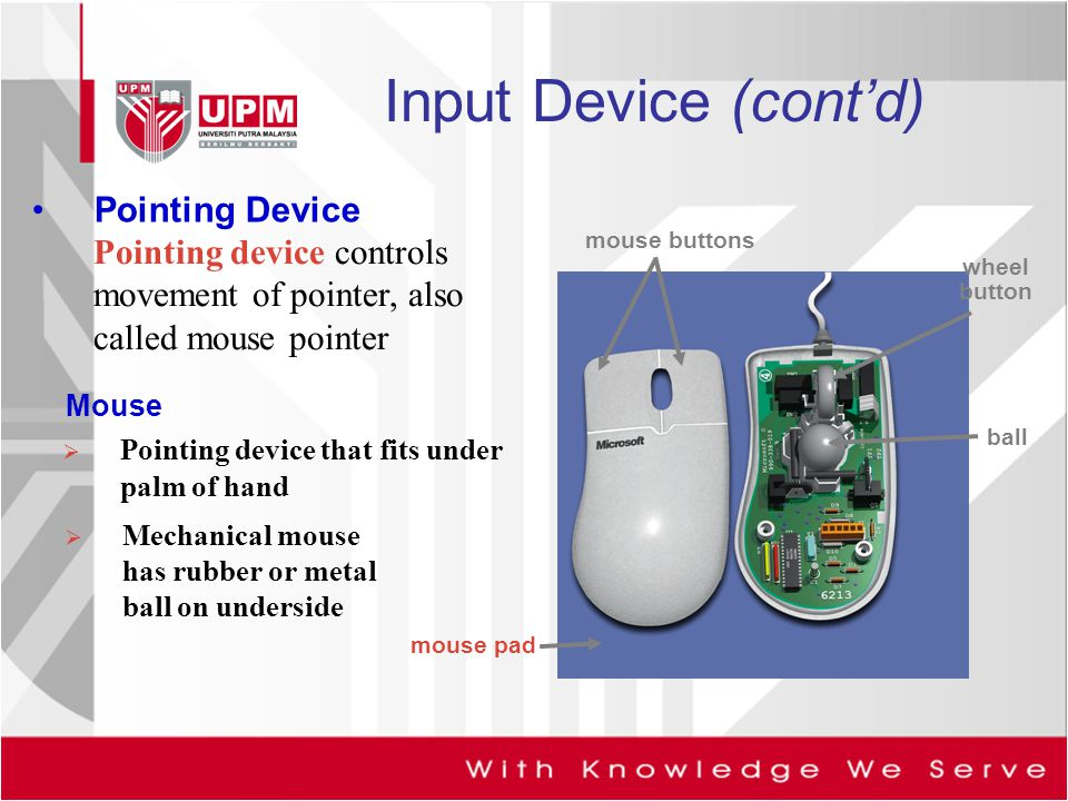 Input Device (cont'd) Pointing Device