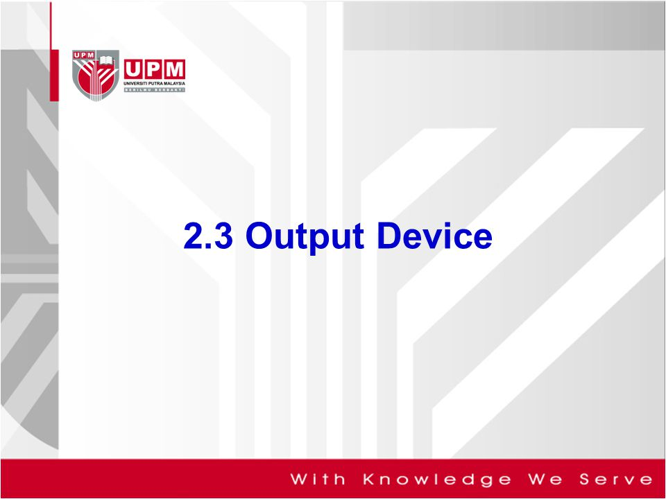2.3 Output Device