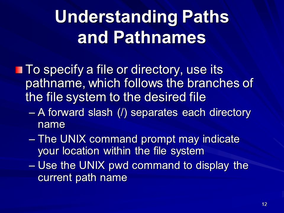 Understanding Paths and Pathnames