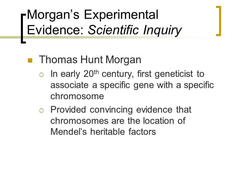Morgan's Experimental Evidence: Scientific Inquiry