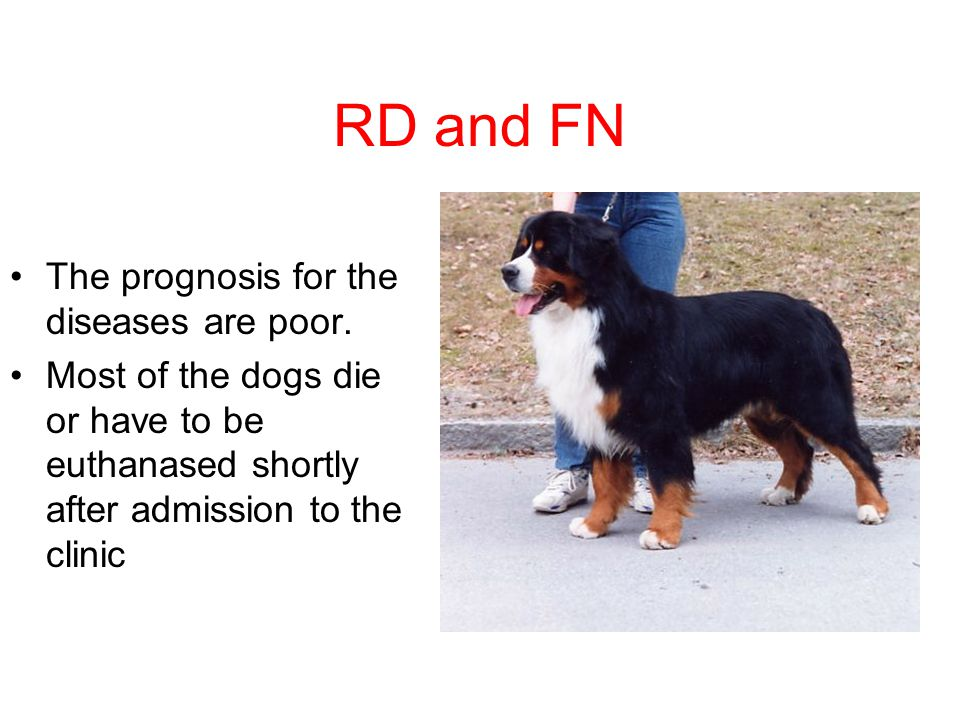RD and FN The prognosis for the diseases are poor.