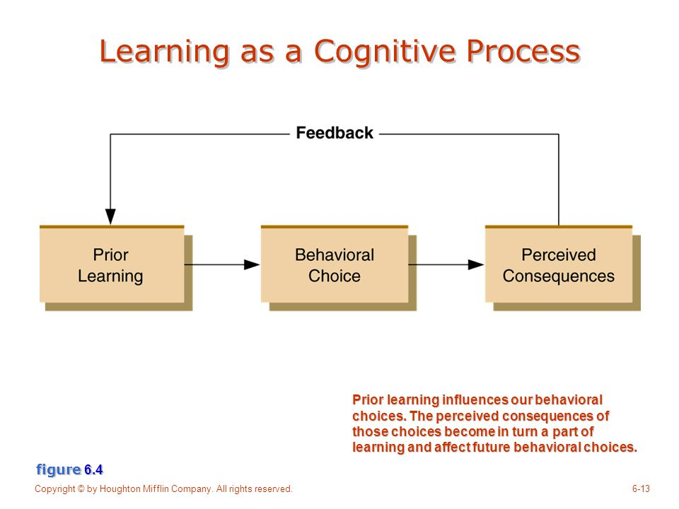Learning as a Cognitive Process