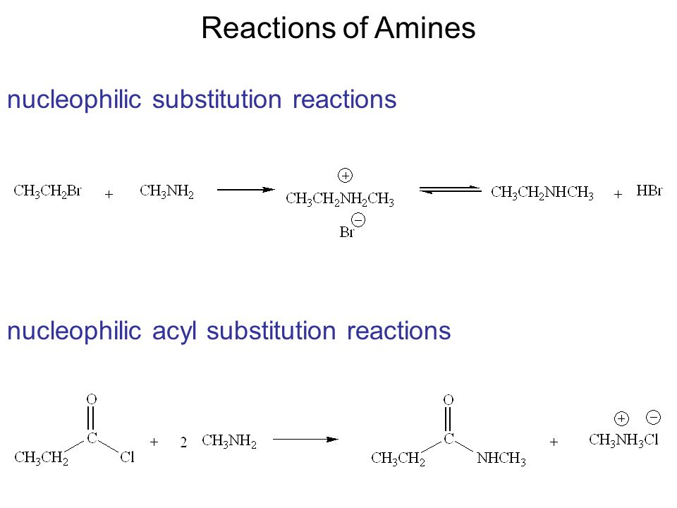 reactions of amines • amines are organic derivatives of ammonia, nh3, in which one or more of the three h's is replaced by a carbon group reactions of amines 26 bases.