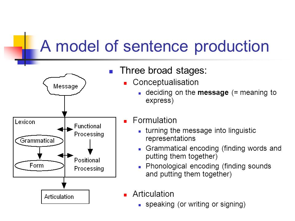 three stages in the articulation of Phonetics and theory of speech production  speech signals of the three vowels  further classification may be made by the place of articulation as labials.