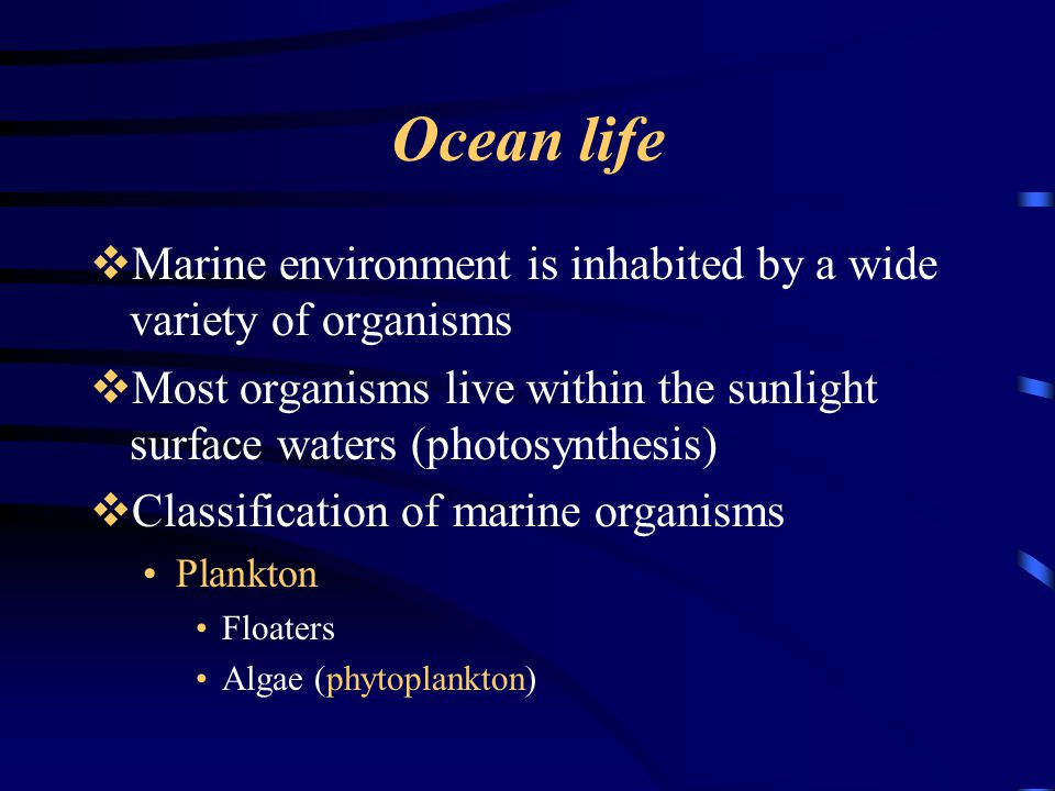 Ocean life Marine environment is inhabited by a wide variety of organisms. Most organisms live within the sunlight surface waters (photosynthesis)
