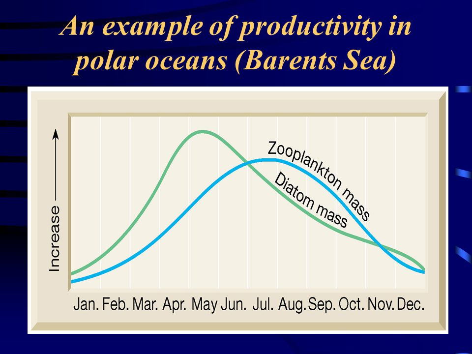 An example of productivity in polar oceans (Barents Sea)