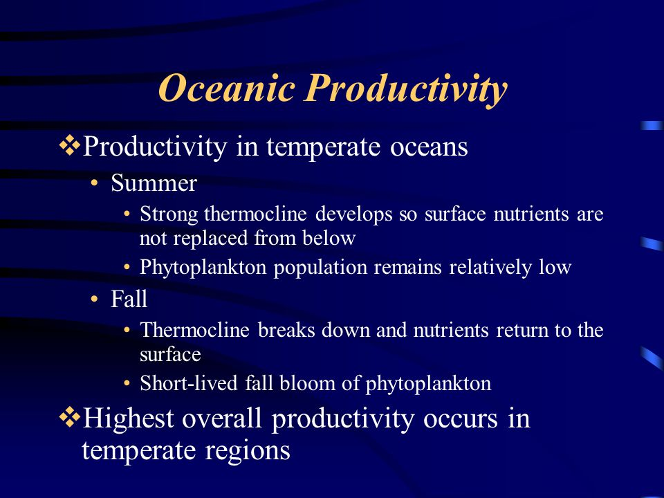 Oceanic Productivity Productivity in temperate oceans