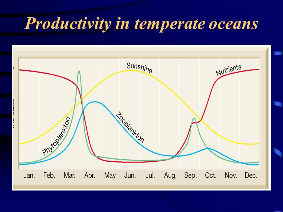 Productivity in temperate oceans