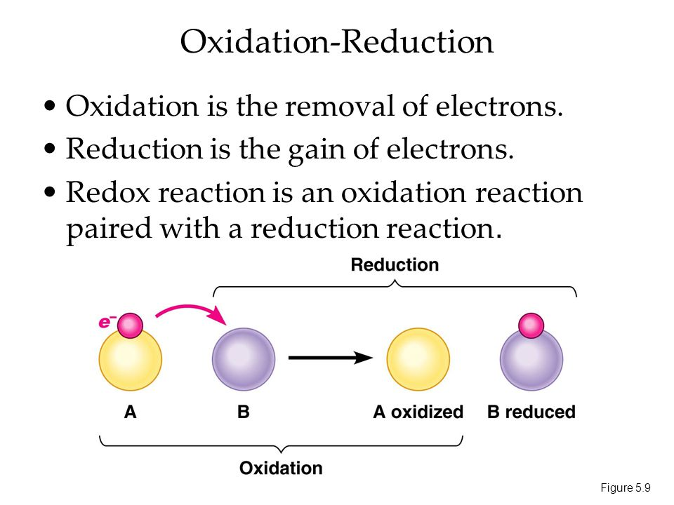 oxidation reduction reaction labpaq Chemical reactions lab objectives: 1 oxidation-reduction reactions 2 chemical equations represent what occurs in a chemical reaction for example, the.