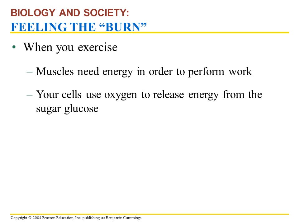BIOLOGY AND SOCIETY: FEELING THE BURN