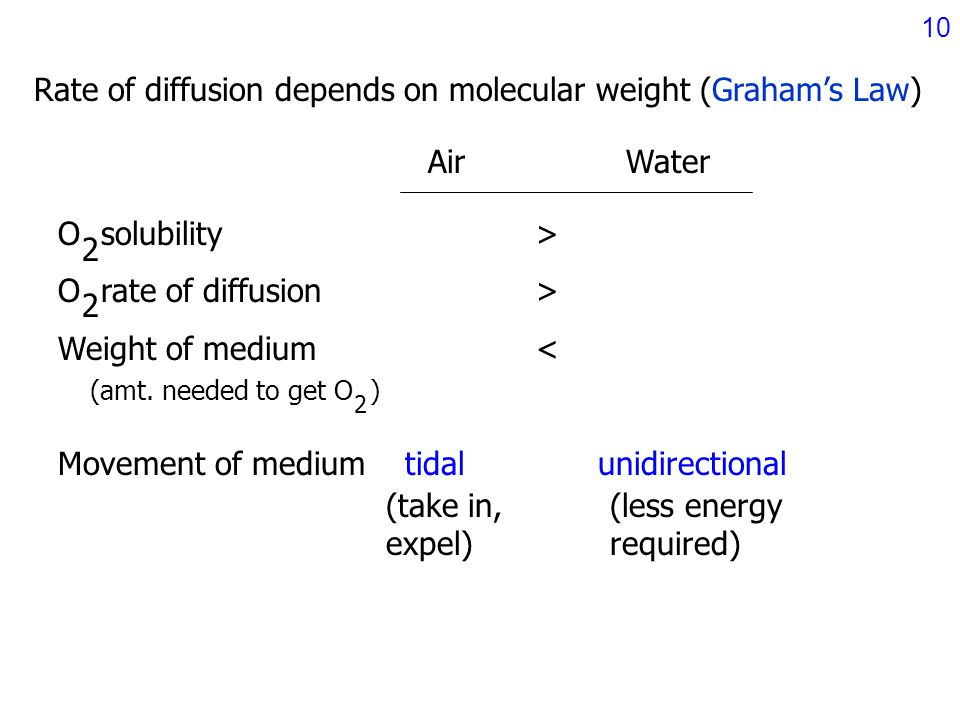 effect of molecular weight in the rate of diffusion How molecular structure affects mechanical properties of an  the relative effect of molecular weight on  room temperature to 400°c at a heating rate.