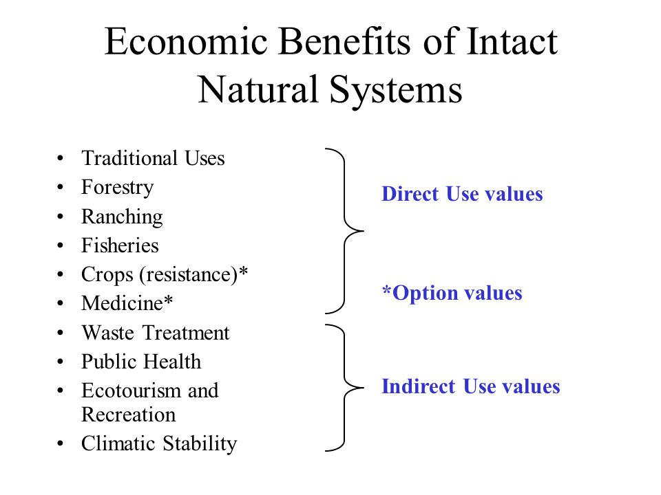 Economic Benefits of Intact Natural Systems