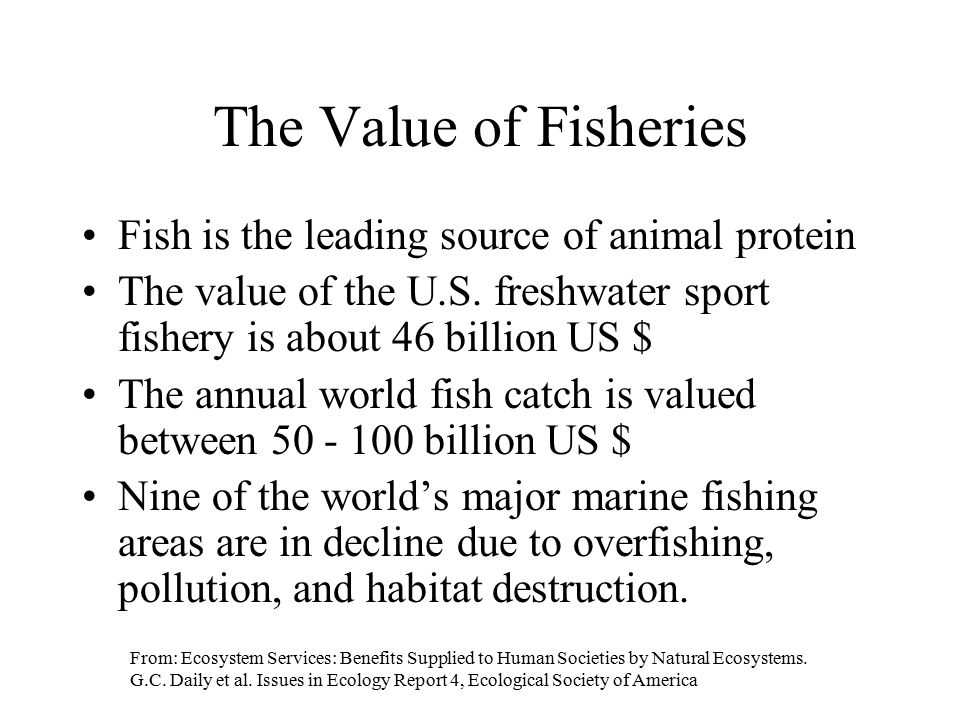 The Value of Fisheries Fish is the leading source of animal protein
