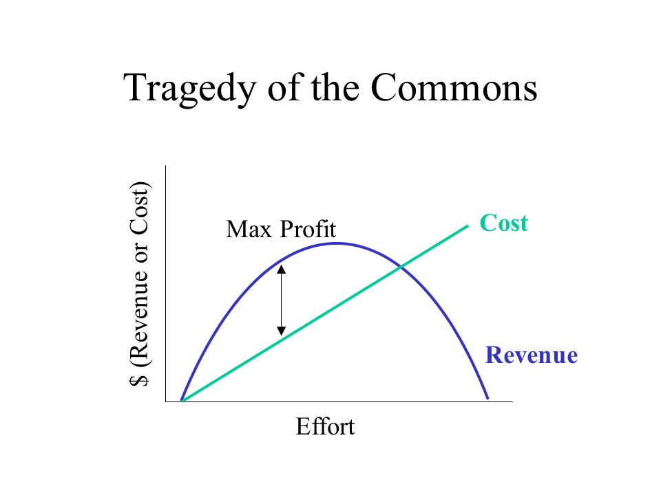 Tragedy of the Commons $ (Revenue or Cost) Cost Max Profit Revenue