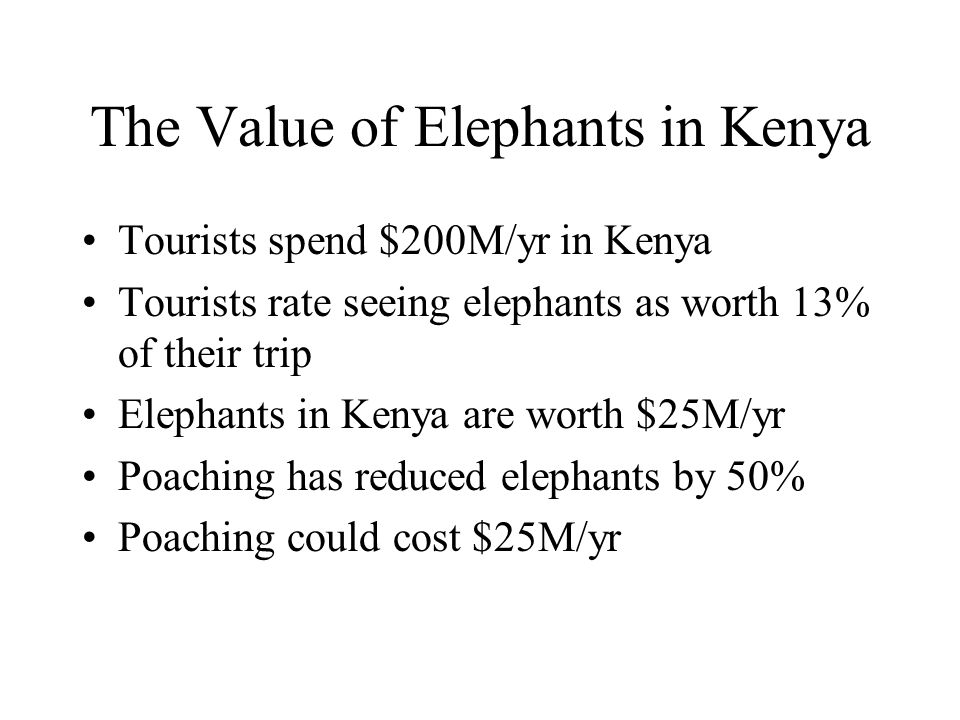The Value of Elephants in Kenya