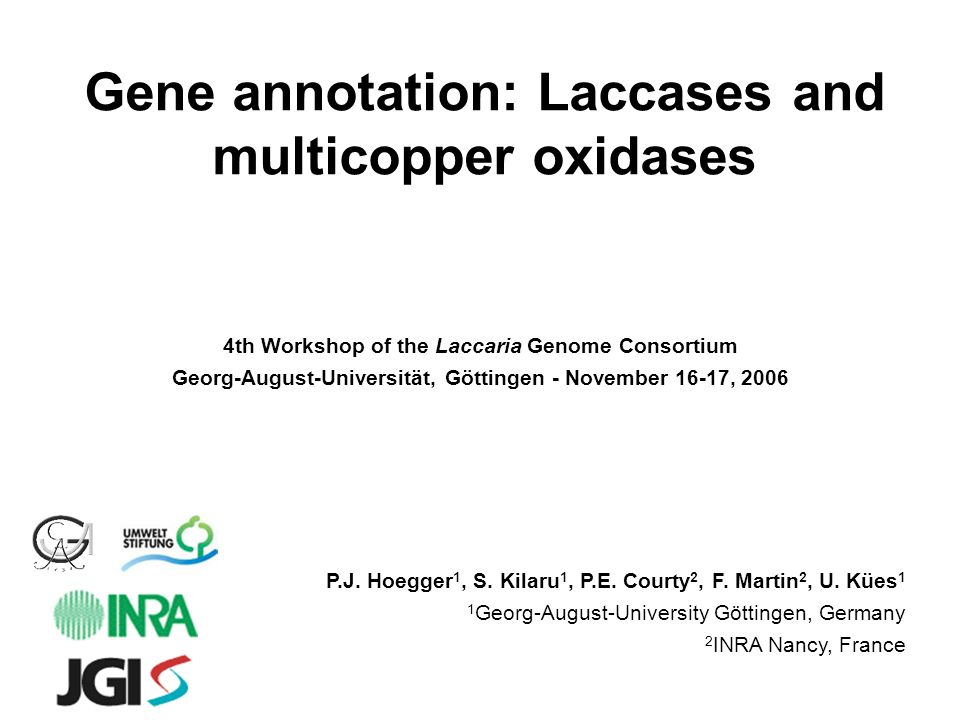 Gene annotation: Laccases and multicopper oxidases