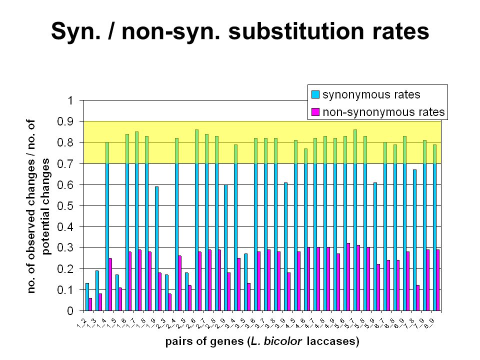 Syn. / non-syn. substitution rates