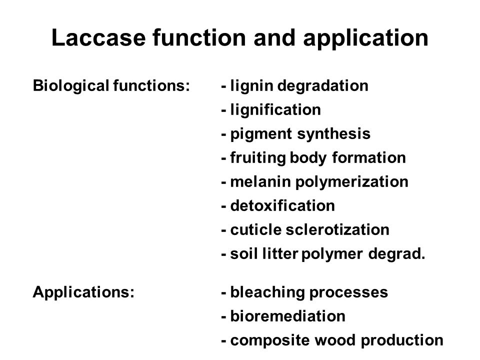 Laccase function and application