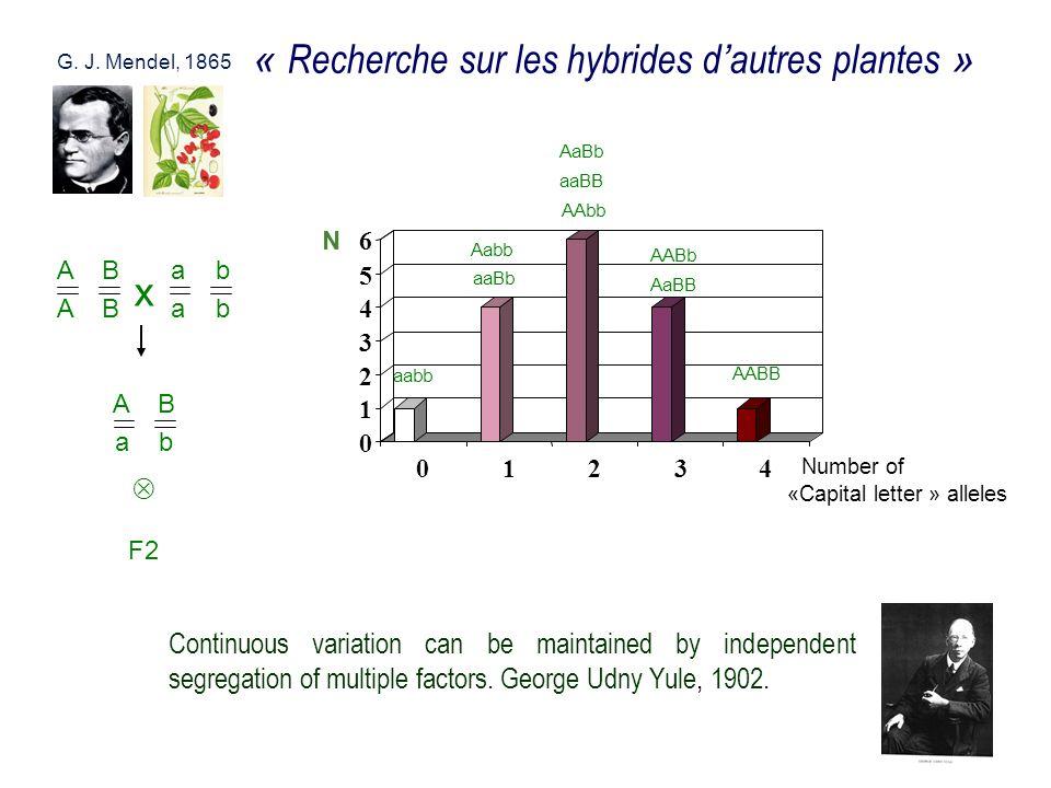 « Recherche sur les hybrides d'autres plantes »