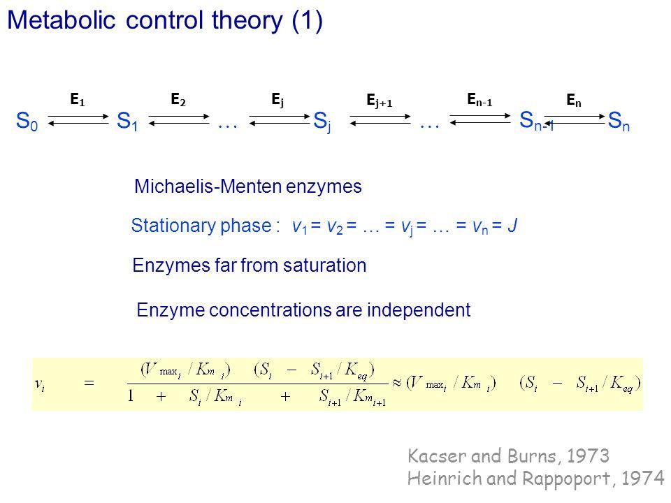 Stationary phase : v1 = v2 = … = vj = … = vn = J