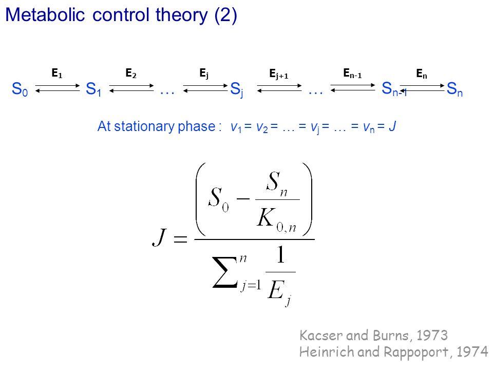 At stationary phase : v1 = v2 = … = vj = … = vn = J