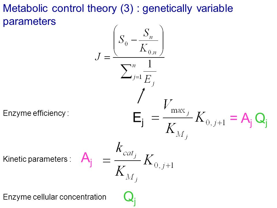 Metabolic control theory (3) : genetically variable parameters