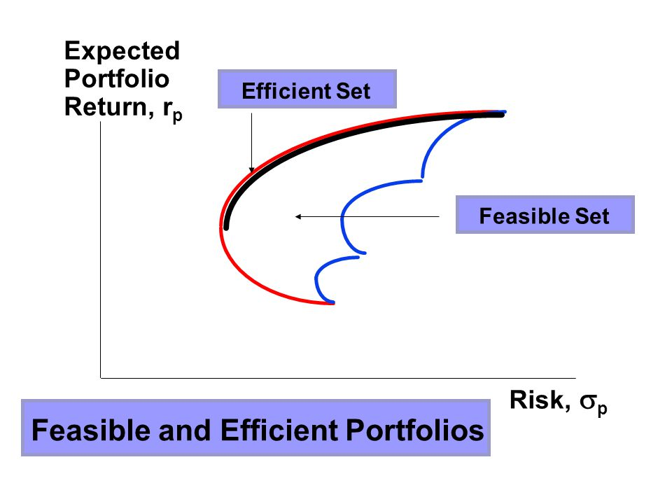 Feasible and Efficient Portfolios