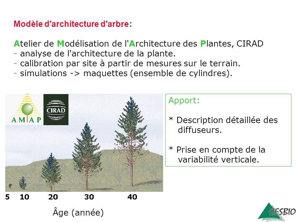 Modèle d architecture d arbre: