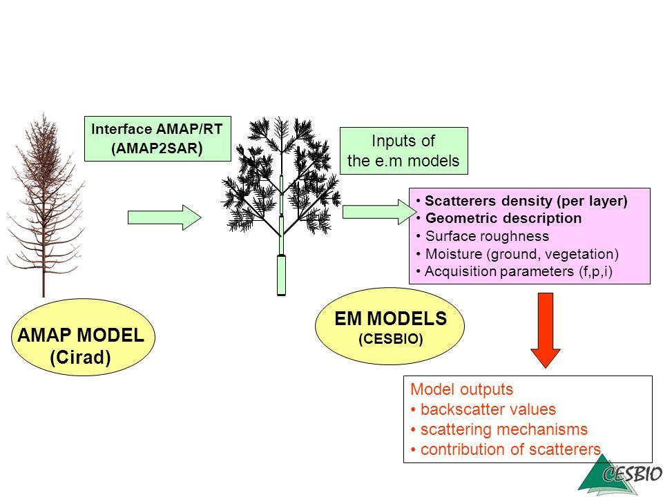 EM MODELS AMAP MODEL (Cirad)