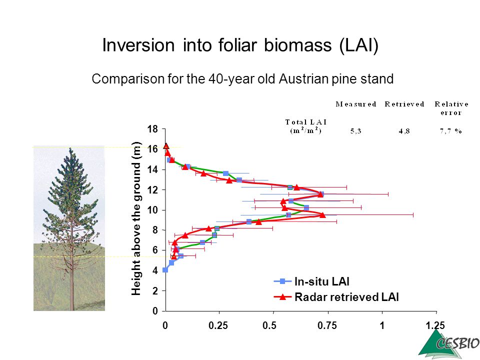 Inversion into foliar biomass (LAI) Comparison for the 40-year old Austrian pine stand