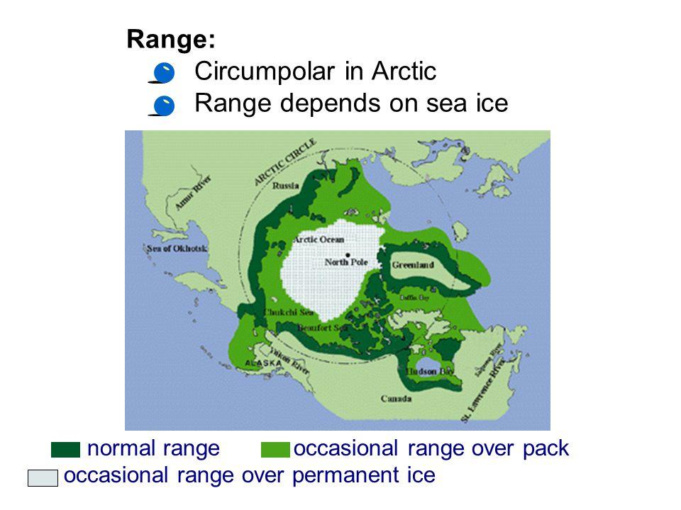 Range depends on sea ice