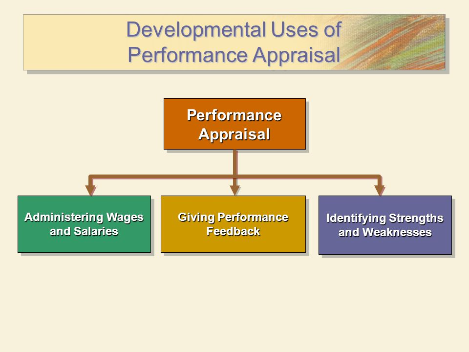 Developmental Uses of Performance Appraisal