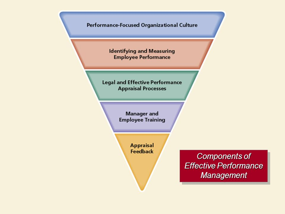 Components of Effective Performance Management