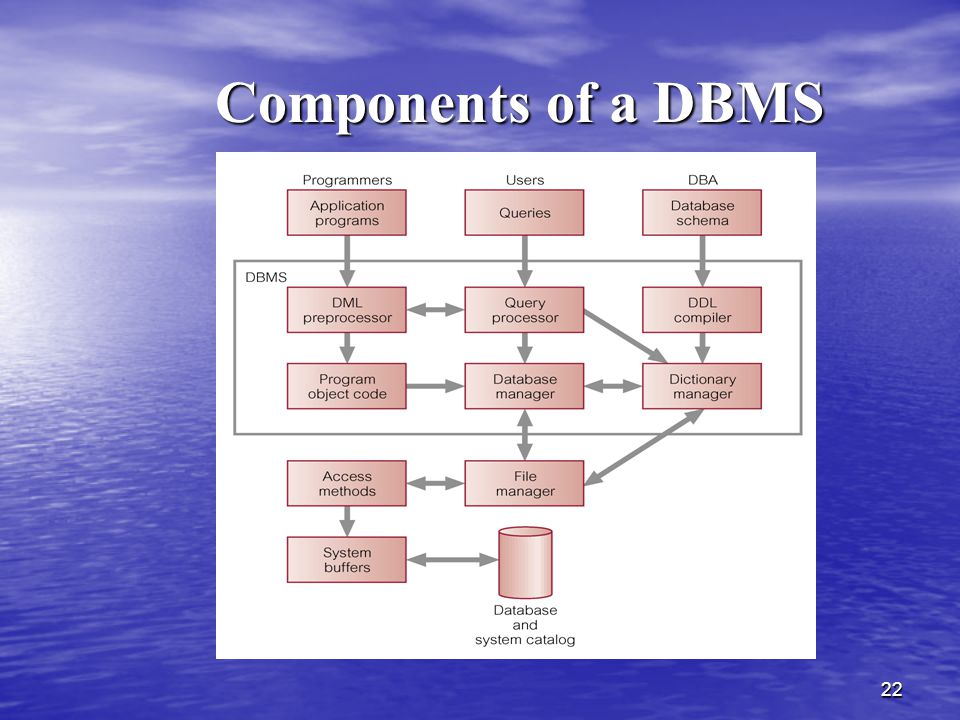 Components of a DBMS