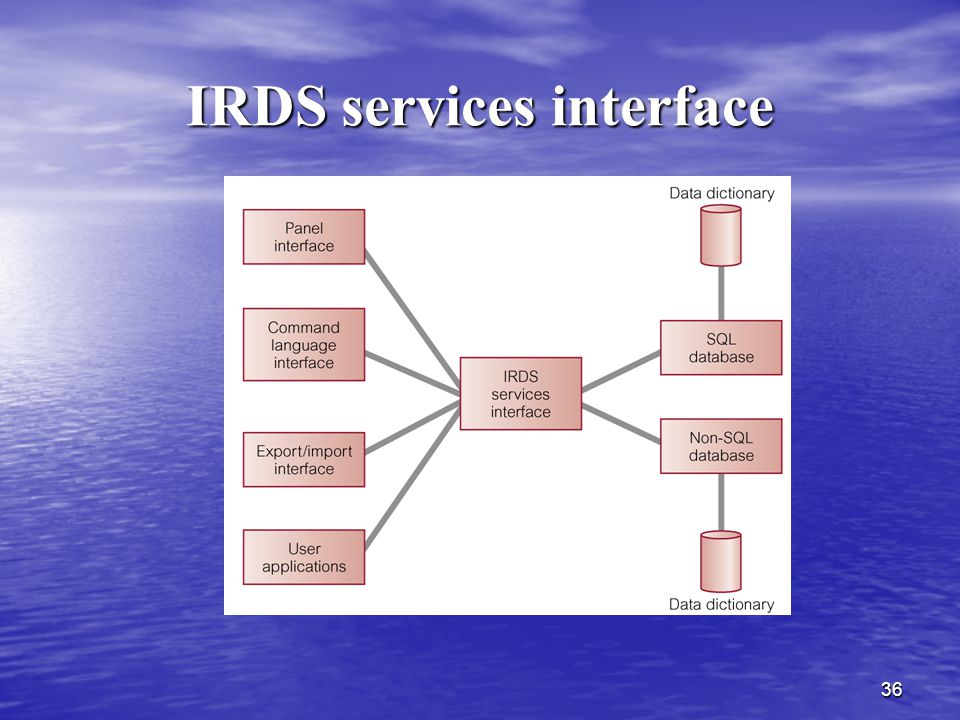 IRDS services interface