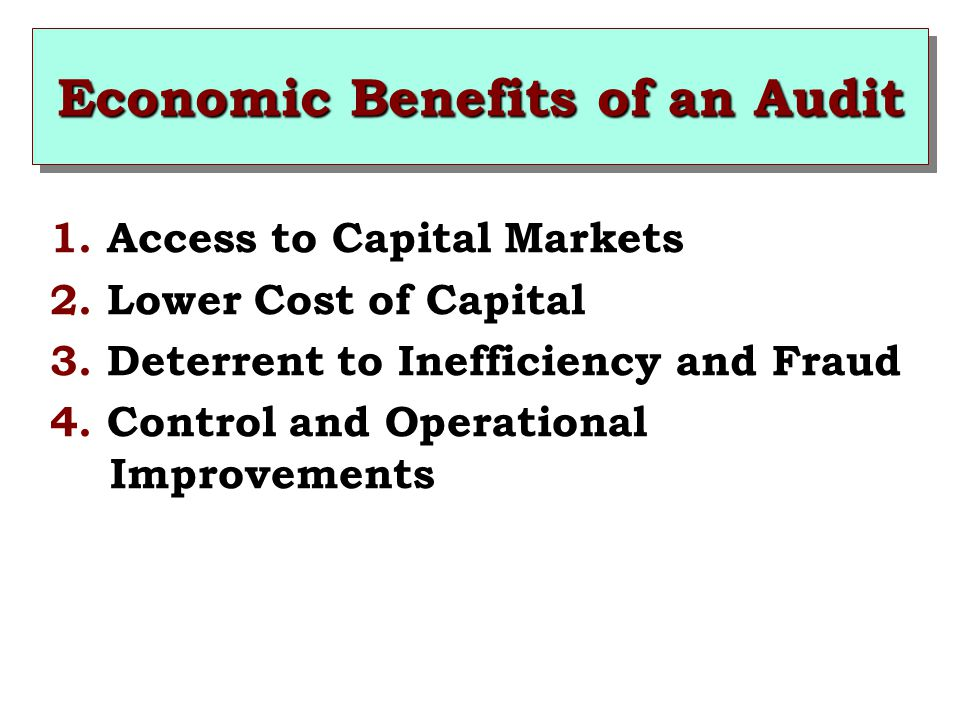 Economic Benefits of an Audit