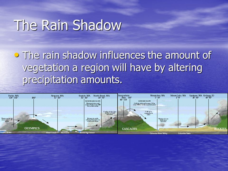 The Rain Shadow The rain shadow influences the amount of vegetation a region will have by altering precipitation amounts.