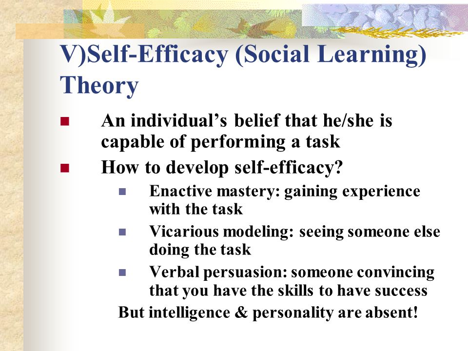 V)Self-Efficacy (Social Learning) Theory