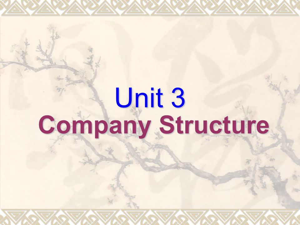Unit 3 Company Structure